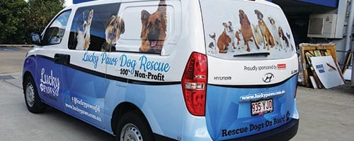 Lucky-Paws-Dog-Rescue-Van-Wrap_200x500